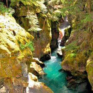 Glacier National Park stream